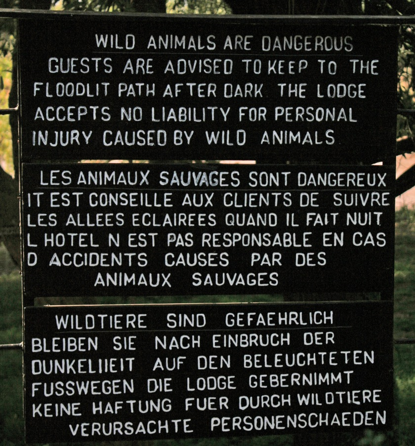 Les Animaux Sauvages sont Dangereux